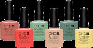 cnd-shellac2